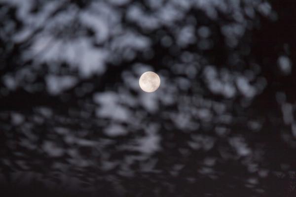 photography_moon_november_10