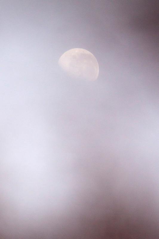 photography_moon_november_44