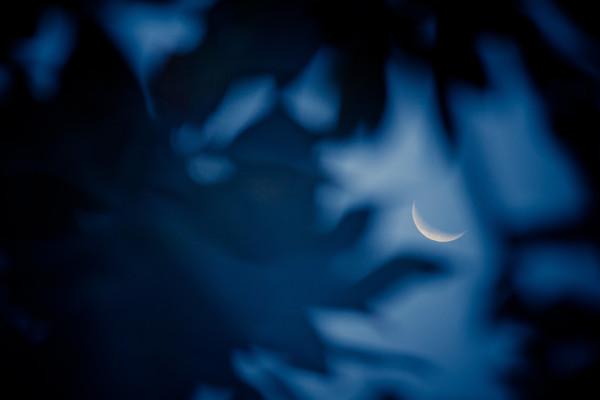 photography_moon_november_75