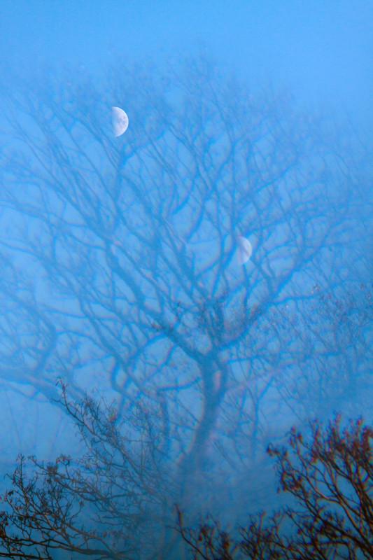 photography_moon_november_110