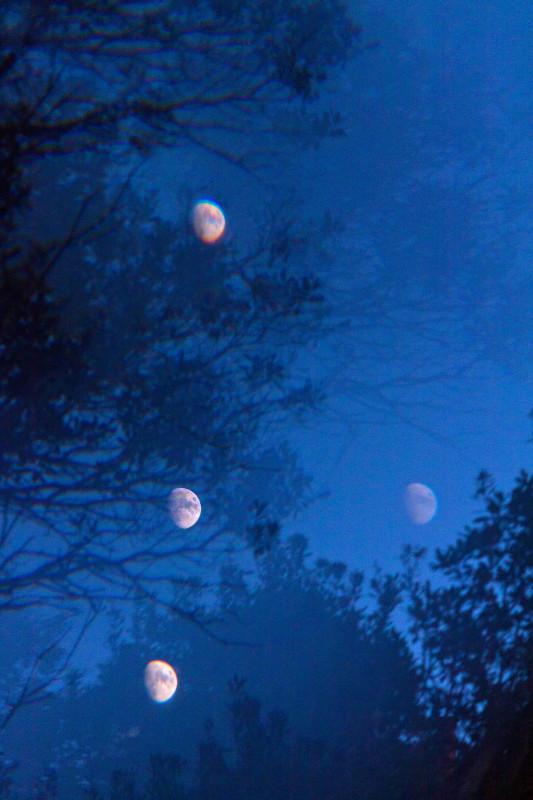 photography_moon_november_118