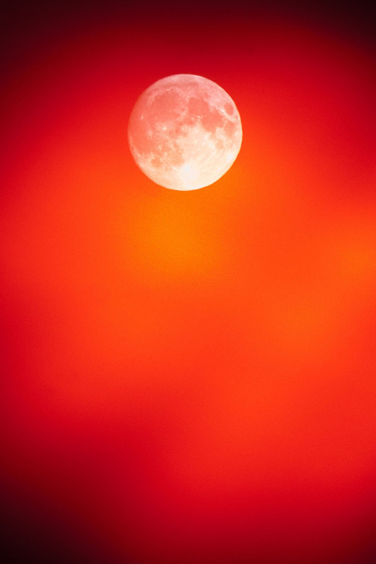 photography_moon_november_131